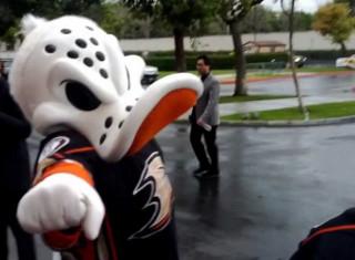 NHL Hockey Betting:  Anaheim Ducks at Nashville Predators&h=235&w=320&zc=1