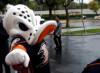 NHL Hockey Betting:  Anaheim Ducks at Nashville Predators&h=73&w=100&zc=1