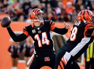 NFL Football Betting:  Buffalo Bills at Cincinnati Bengals&h=235&w=320&zc=1